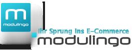 modulingo GmbH